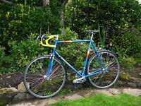 Large Mens Peugeot Lauteret Racer racing bike fully serviced and rebuilt with Campagnolo! £200!