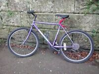 Gents bike for sale
