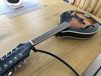 Ozark 2077 Electro-Acoustic Mandolin - Great Condition, Inc. Soft Case & Books