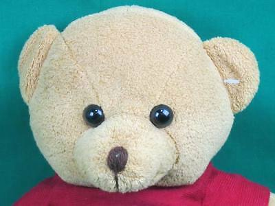 Habitat For Humanity Golden Brown Teddy Bear Home Sweet Home Plush Stuffed Lovey