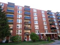369 London Road - 1 Bedroom Apartment for Rent
