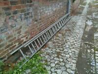 Pair of 5m Ladders
