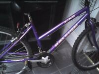RALEIGH LADIES MOUNTAIN BIKE,17 INCH FRAME,26 INCH WHEELS,18 GEARS,GOOD TYRES,JUST SERVICED.