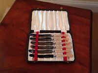 Vintage Butter Knives in box c1959 set of 6 faux ivory handles