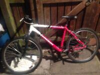 Schwinn 21speed bike26inch wheels £25£25