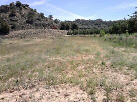 Land for sale due to bereavement-Caspe Spain