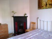 Double room for let single occupancy from 30 October