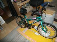 Young Boys Mountain bike