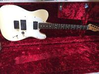 Fender Telecaster Mexican Jim Root Signature Edition EMG Pickups Slipknot