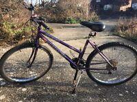 Bike Bicycle for Sale - Ladies