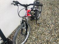 """Boys bike 20"""""""