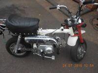 JINCHENG MONKEY BIKE 72 CC Moped pit Cycle motor WHY sky team honda yamaha kawasaki suzuki p/x swap