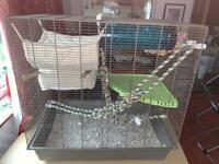 Full Rat Starter Kit and Cage