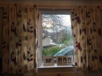 Debenhams curtains