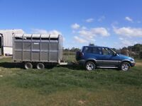 Ifor Williams 10ft livestock trailer