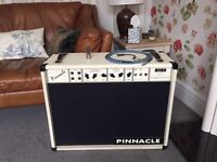 Pinaccle Twin 30 Handwired Point to Point Amp Mint Condition