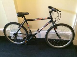"Adult Mountain Bike. 12 Speed. 19"" Frame."