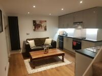 1 bedroom basement flat, Hampton