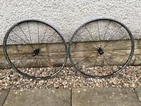 Shimano RS81 C24 Carbon wheelset