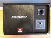 Peavey Eurosys 12M Wedge Stage Monitor PA passive speaker front of house FOH studio performance