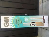 Cricket bats, balls and stumps set (brand new)
