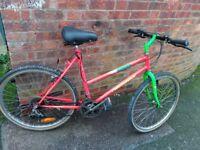 "ladies townsend mango creek bike 26"" wheels"