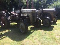 *** Untoched Original Ferguson tractors ***