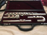 Odyssey Premier flute with both mouth pieces curved and straight so is a great flute for beginners.