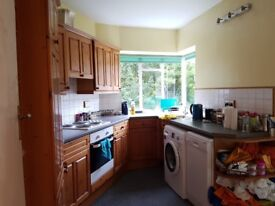 Lovely double room close to Ealing Broadway