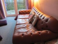 leather chesterfield - english sofa company
