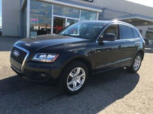 2011 Audi Q5 2.0 LT PREMIUM PLUS HEATED LEATHER FOG LIGHTS AWD Kitchener / Waterloo Kitchener Area image 2