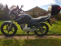 Yamaha YBR125 Low mileage.