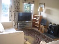 1 bed and large boxroom, spacious flat with lots of storage and access to garden.