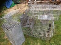 Pest control cages