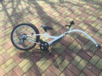 Ditto trailer bike