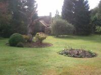 DW Garden Maintenance