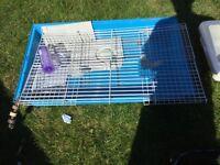 Indoor and outdoor Rabbit hutches