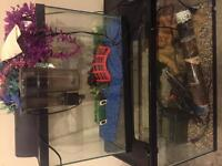 20, 33 and 75 gallon fish tanks for sale!
