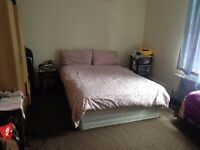 Big Double Room for European/Australian /North American professionals or Females/couple