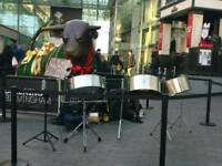 Steel drum lessons