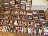 Job lot of 545 DVDs horror chick flicks comedy action ect excellent condition