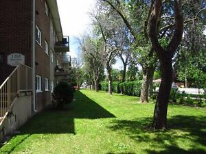 2 Bedroom London Apartment for Rent on multiple bus routes London Ontario image 1