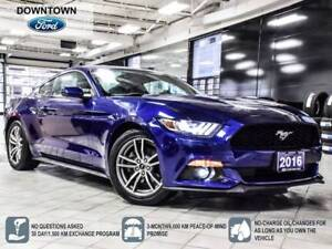 2016 Ford Mustang EcoBoost Premium, Navigation, Trade-in, Leathe