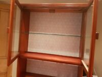Refurbished tall display cabinet with retro wallpaper inlay,glass doors & integrated light fitting