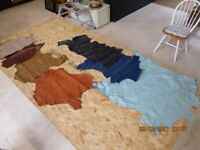 Selection of Tanned Kid Hides & Leather Pieces