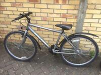 Raleigh Max mountain bike bicycle