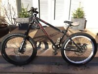 DMR Rhythm Dirt Jump Bike