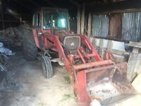 Massey Ferguson 565 with loader, weight, and bucket