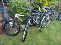 Various Different Bicycles - Hybrid and Mountain Bikes
