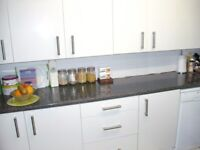 NW5 1bed lower ground floor flat, own large garden, wanting 1 bed garden N16/SW london